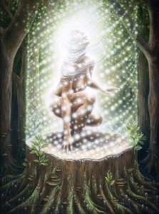 ascended body light tree