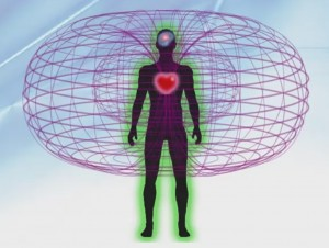 Heart energy field holomatrix