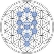 Flower of Life Tree of life