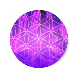 violet_flame_flower_of_life_classic_round_sticker-r46b40713586b49c4b5432f933e416d73_v9waf_8byvr_324.jpg